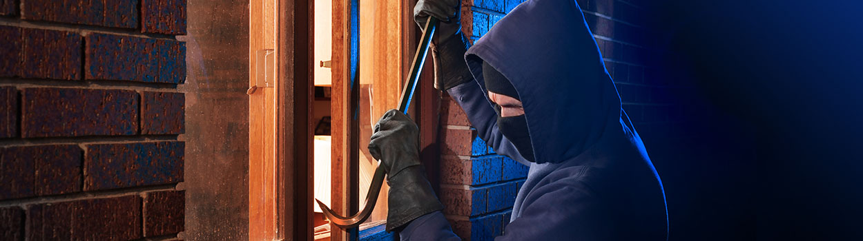 burglar1250x350